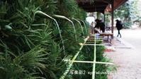 下鴨神社に行く2月 - 写楽彩2
