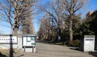 「30分歩き-都立豊多摩高等学校付近」歩く#30 - 古稀からの日々