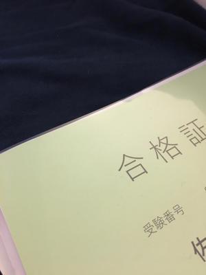 イブランス+フェソロデックス他副作用まとめ - オペ室ナースmoko☆の乳がん徒然日記