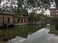 名勝 松平家 別邸 養浩二館庭園 へのご案内 - ふくい女将日記~宝永(ほうえい)旅館、おかみでございます。