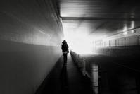 光の中へ - haze's photos