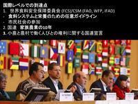 【完訳1】国連採択された「小農と農村で働く人びとの権利に関する国連宣言」、最終決議・宣言を監訳終えました。まず前文 - Lifestyle&平和&アフリカ&教育&Others