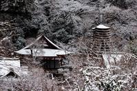 雪の多武峰と細川 - toshi の ならはまほろば
