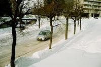 立春の通勤路の陥没路面 - 照片画廊
