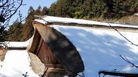 御岳山探鳥会2019/2/3 - 山と鳥を愛するアナパパ