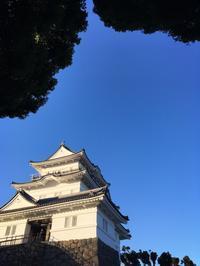 小田原城散策 - うつわ愛好家 ふみの のブログ