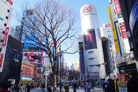 2月4日㈪の109前交差点 - でじたる渋谷NEWS
