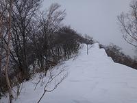 水後山と大日ヶ岳へ行ってきました。 - blog版 がおろ亭