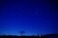 2月2日今日の写真 - ainosatoブログ02