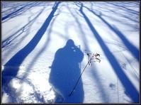 雪に木影 - 好い加減に過ごす2