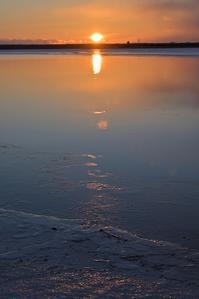 ある朝のウトナイ湖 - やぁやぁ。