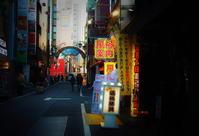 街角スナップ・ 東京新宿 - 眠らぬ街歌舞伎町 - 天野主税写遊館