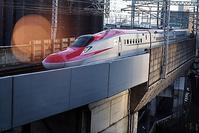 藤田八束の鉄道写真@東北新幹線を仙台で撮影、素晴らしい角度で撮影できました・・・感動の新幹線写真 - 藤田八束の日記