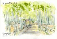 竹林の農道 - 風と雲
