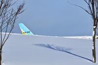 雪に埋もれる~旭川~ - 自由な空と雲と気まぐれと ~from 旭川空港~