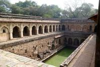 2019インド旅行その1 デリーのMehrauli Archaeological Park - 旅行・映画ライター前原利行の徒然日記