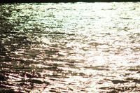 東京の川5 - はーとらんど写真感