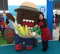 レポート 【NHK食育WS『雑穀アートを作ろう~!』in 北海道つどーむ】 - 体にやさしい雑穀Life色々・・・