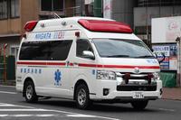 新潟市消防出初式/救急・指揮系車輌 - 偽プリーストぶろぐ