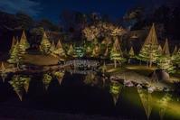 金沢城公園・玉泉院丸庭園ライトアップ - 鏡花水月