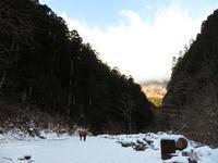 シェイクスピア氷柱群観賞~♪【大峯】2/2 - 静かなお山の森歩き~♪