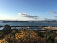 2019海老の宿を堪能3ちょっと頂上へ - ホリー・ゴライトリーな日々
