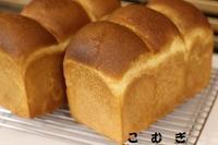 ふわふわ食パン - パン・お菓子教室 「こ む ぎ」