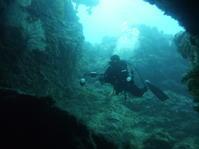 流されるままに~糸満近海ガイド付きボートダイビング(ファンダイビング)~ - 沖縄本島最南端・糸満の水中世界をご案内!「海の遊び処 なかゆくい」