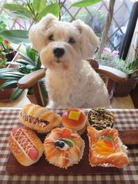 美味しそうなパン♪ - おぽログ♪