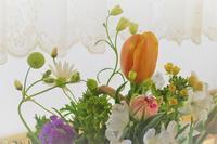 花摘むころを思い浮かべて - 長女Yのつれづれ記