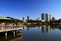 潮入の池(浜離宮恩賜庭園) - お散歩写真     O-edo line