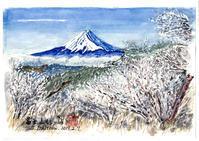 晴朗の三瓶山② - 清治の花便り