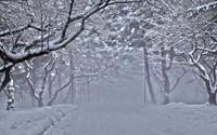 今日の雪事情 - へっぽこな・・