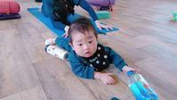 本日2月8日(金)のヨガ... - emi yoga (エミ ヨガ)始めます(^-^)