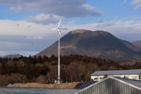 風車とトンビ (撮影日:2019/2/7) - toshiさんのお気楽ブログ