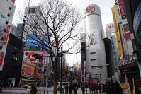 2月8日㈮の109前交差点 - でじたる渋谷NEWS