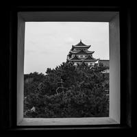 名古屋城 - え~えふ写真館
