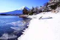 31年2月の富士(6)雪の長崎公園の富士 - 富士への散歩道 ~撮影記~