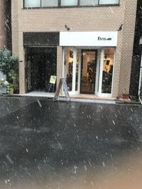 浅草、雪が降ってます - Shoe Care & Shoe Order 「FANS.浅草本店」M.Mowbray Shop
