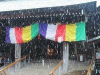 ちょっと寄り道・大寒波襲来 - 神奈川徒歩々旅