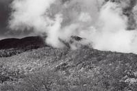 モノクロ風景妙高高原笹ヶ峰牧場2 - 光 塗人 の デジタル フォト グラフィック アート (DIGITAL PHOTOGRAPHIC ARTWORKS)