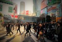 街角スナップ・ 駅前東京渋谷駅前交差点 - 天野主税写遊館