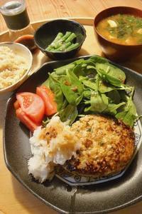 豆腐ハンバーグ - 週末は晴れても、雨でも