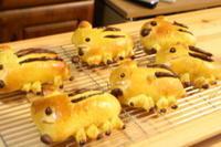 特別レッスンうり坊・ベリーキューブ - 小麦の時間   京都の自宅にてパン教室を主宰(JHBS認定教室)