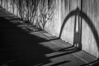 Shadows Getting Shorter - SILENT SOLILOQUY