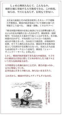 あっちへ行け韓国人!東京カラス - 東京カラスの国会白昼夢