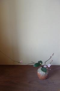 立春に梅を生ける - g's style day by day ー京都嵐山から、季節を楽しむ日々をお届けしますー