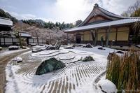 雪景色の圓光寺 2019 - ぴんぼけふぉとぶろぐ2