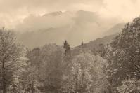 モノクロ風景妙高高原笹ヶ峰牧場3 - 光 塗人 の デジタル フォト グラフィック アート (DIGITAL PHOTOGRAPHIC ARTWORKS)