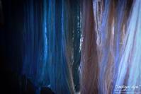 """""""indigo dye"""" - ~まきち写真工房~"""